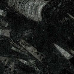 Nero Fossile